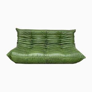 3-Sitziges Sofa aus waldgrünem Leder von Michel Ducaroy für Ligne Roset, 1980er