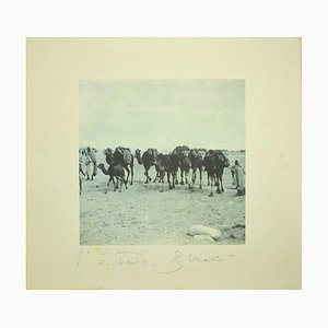 Bettino Craxi, Chamels In the Tunisian Desert, 1995, Photolithograph