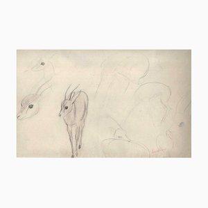 Ernest Rouart, Roe Sketches, 1890er, Bleistift auf Papier
