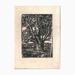 Jean Morin, Der Große Baum, 1922, Holzschnitt