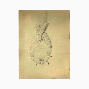 Ernest Rouart, Der Spatz, frühes 20. Jahrhundert, Bleistift auf Papier