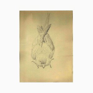 Ernest Rouart, The Sparrow, Early 20th Century, Pencil on Paper
