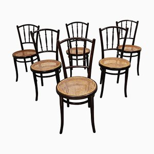 Bentwood Chairs from Thonet, 1920s, Set of 6