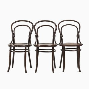 Bentwood Chairs from Mundus Vienna Austria, 1920s, Set of 3