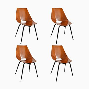 Curved Plywood and Teak Dining Chairs from Società Compensati Curvati, 1960s, Set of 4
