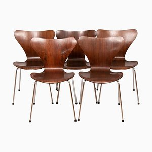 Series 7 Model 3107 Rosewood Dining Chairs by Arne Jacobsen, 1960s, Set of 5