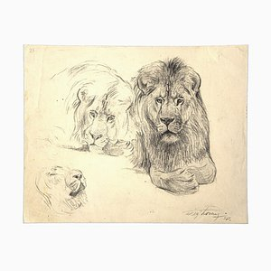 Wilhelm Lorenz - Study of Lion and Lioness - Original Drawing - Mid-20th Century