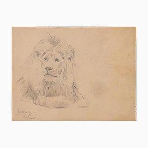 Wilhelm Lorenz - Lion - Dessin Original - 1932