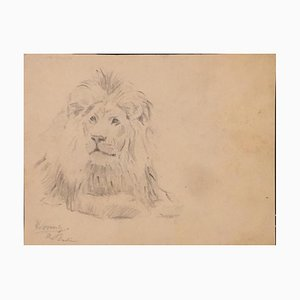 Wilhelm Lorenz - Lion - Original Drawing - 1932