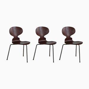 Dänische Ameise Esszimmerstühle von Arne Jacobsen für Fritz Hansen, 1960er, 3er Set