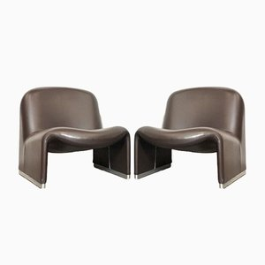 Tanglewood Model Alky Lounge Chairs by Giancarlo Piretti for Castelli / Anonima Castelli, 1970s, Set of 2