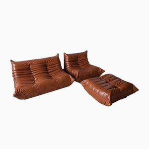 Leather Whiskey Brown Togo Living Room Set by Michel Ducaroy for Ligne Roset, 1970s, Set of 3
