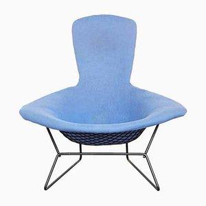 Bird Chair by Harry Bertoia for Knoll Inc. / Knoll International, 1970s