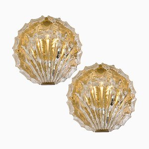 Goldene Eisglas Muschel Wandleuchten von Kalmar, 1960er, 2er Set