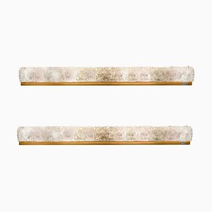 Große Murano Glas und Messing Wandlampen von Hillebrand, 2er Set