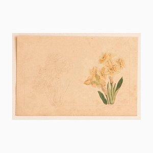E. Doors - Flowers - Original Lithografie auf Papier von E. Doors - 1860
