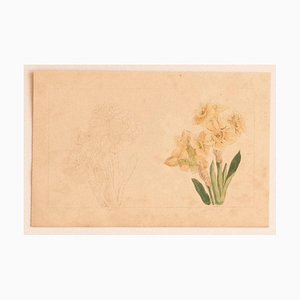 E. Doors - Flowers - Original Lithograph on Paper by E. Doors - 1860