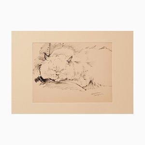 Marie Paulette Lagosse - the Cat - Original Stift auf Papier - 1970er Jahre
