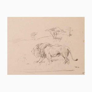 Wilhelm Lorenz, Study of Lion, Drawing, Mid-20th Century