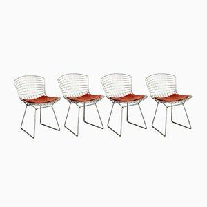 Vintage Chrom Esszimmerstühle von Harry Bertoia für Knoll Inc. / Knoll International, 4er Set