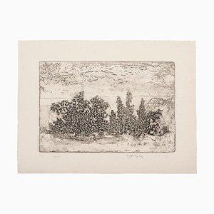 Unknown - Landscape - Original Etching on Paper - 1969