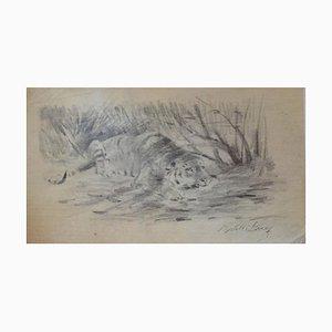 Wilhelm Lorenz - Tiger At Rest - Original Pencil - Mid-20th Century