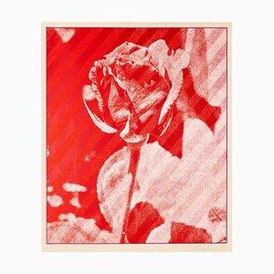 Constantine Persers - the Rose - Originaler Siebdruck - 1973