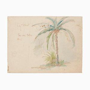 Inconnu - Palmier - Aquarelle Originale - Fin 20ème Siècle