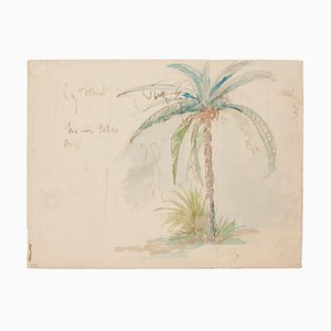 Unknown - Palm Tree - Original Watercolor - Late 20th Century
