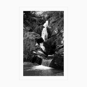 Großer schwarz-weißer Giclée Druck von Zen Forest Waterfall, Landscape, 2021