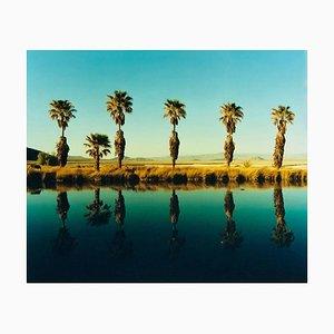 Zzyzx Resort Pool II, Soda Dry Lake, California - Palm Print Color Photography 2002