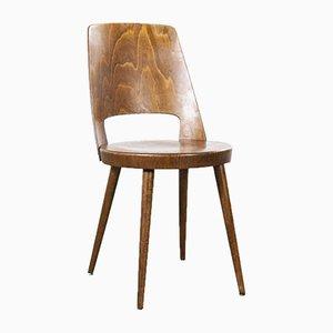 Französische Mondor Esszimmerstühle aus Bugholz von Baumann, 1960er, 6er Set