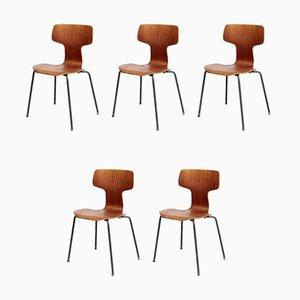Modell 3103 Hammer Stühle von Arne Jacobsen für Fritz Hansen, 1960er, 5er Set