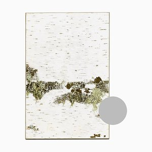 Small Edge Light Grey Birch Wall Panel with Moss and Lichen from Moya