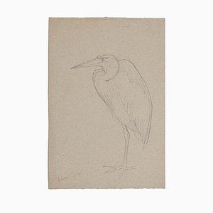 Unknown - Stork - Original Bleistift auf Papier - Mitte des 20. Jahrhunderts