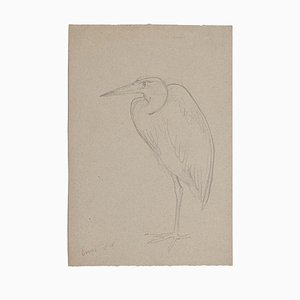 Unknown - Stork - Original Pencil on Paper - Mid-20th Century
