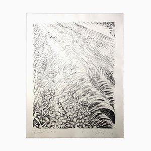 Pericles Fazzini - Field - Original Lithographie - 1960 Ca