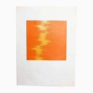 Biesele Igildo, The Amount, Space Age Print
