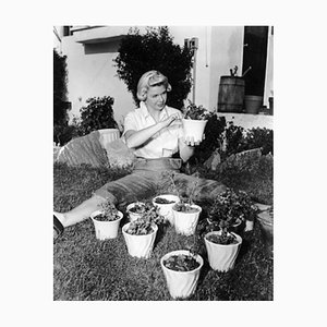 Green Fingered Doris Day Archival Pigment Print Framed in Black by Everett Collection