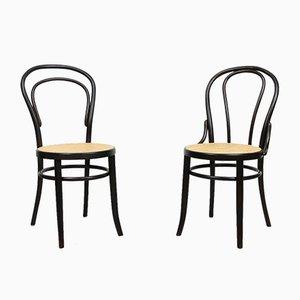 Dunkelbraune Nr. 18 Stühle von Michael Thonet, 2er Set