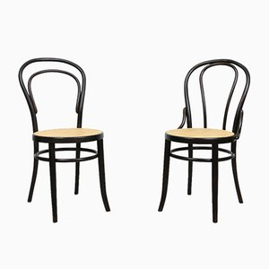 No. 18 Dark Brown Chairs by Michael Thonet, Set of 2