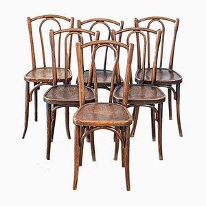 Chaises d'Appoint de Thonet, 1930s, Set de 6