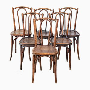 Side Chairs from Thonet, 1930s, Set of 6
