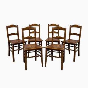 Antike Estnische Esszimmerstühle von Luterma, 1910er, 6er Set