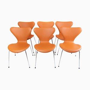 Chaises Seven Modèle 3107 par Arne Jacobsen, Set de 6