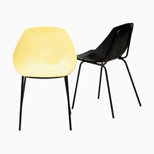 Stühle von Pierre Shell Guariche, 2er Set