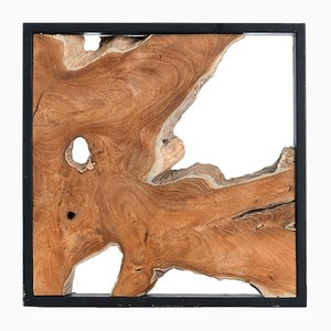 Framed Slice of Teak