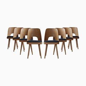 Esszimmerstühle von Oswald Haerdtl, 1950er, Set of 8