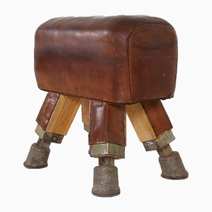 Vintage Leather Pommel Horse