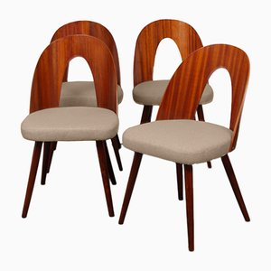 Czech Wooden Dining Chairs by Antonin Suman for Tatra Nabytok, 1960s, Set of 4